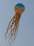 Oktopus 17m