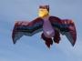 Pterodactylus 9 x 5 m