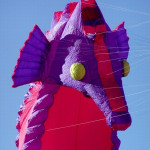 some of our kites